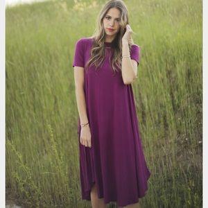 NWT midi swing dress in Magenta